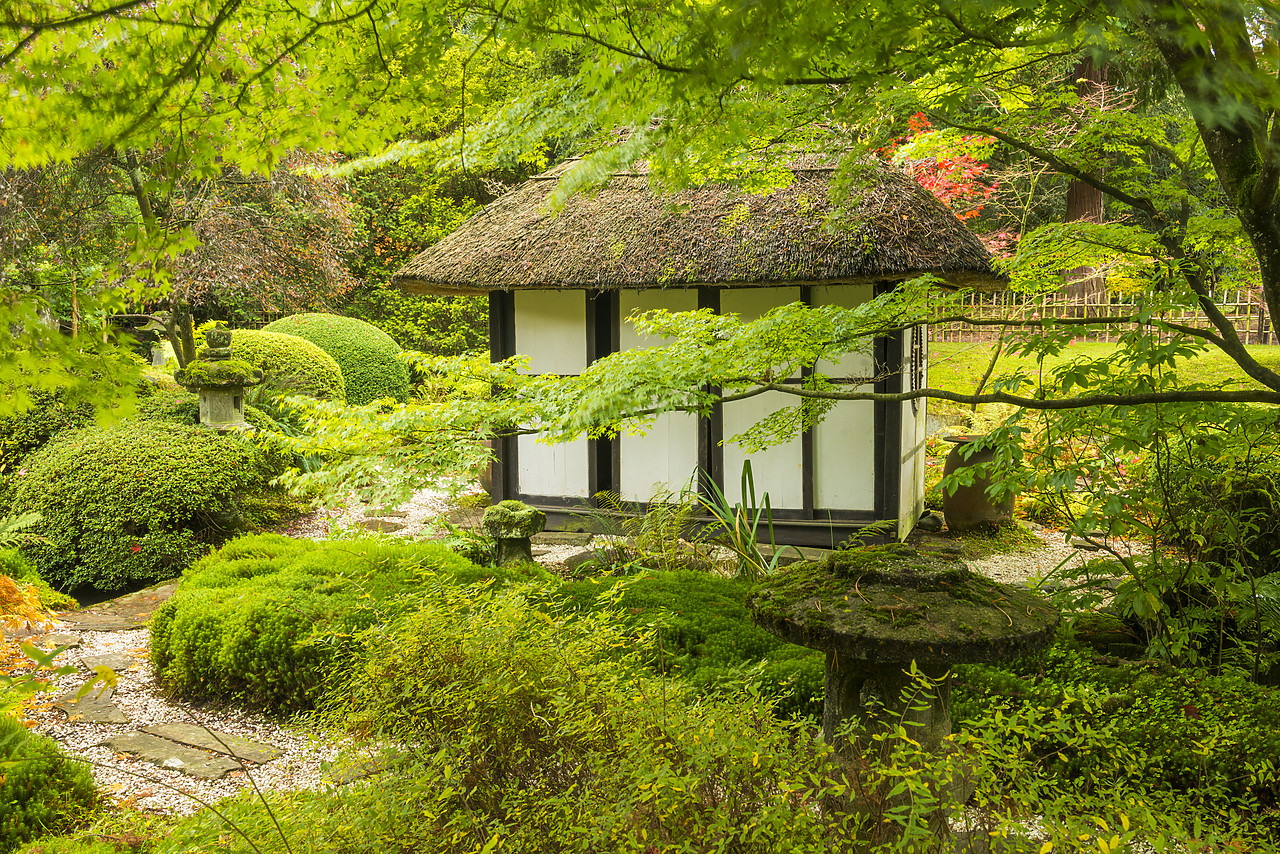 #130414-1 - Thatched Tea House in Japanese Garden, Tatton Park, Cheshire, England