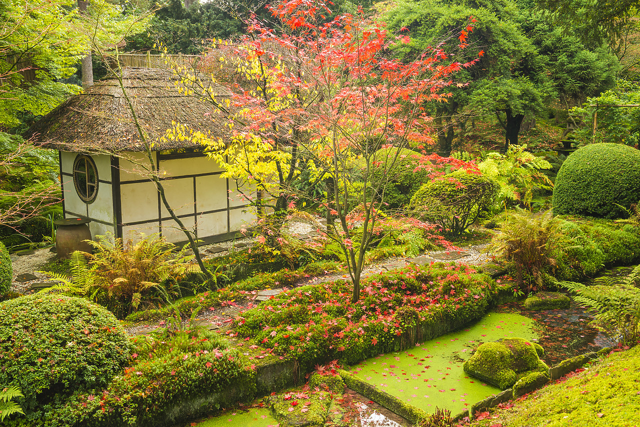 #130417-1 - Thatched Tea House, Tatton Park, Cheshire, England