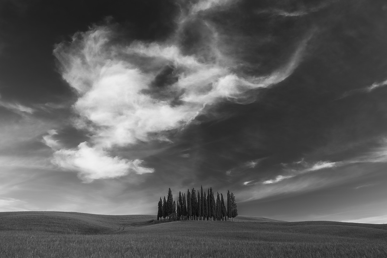 #170749-2 - Cypress Trees & Cloud Formation, Val d'Orcia Tuscany, Italy