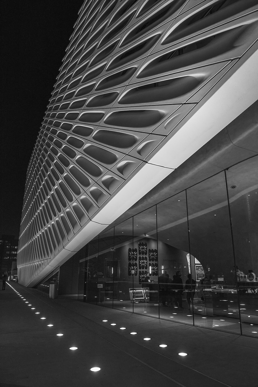 #170788-1 - The Broad, Los Angeles, California, USA