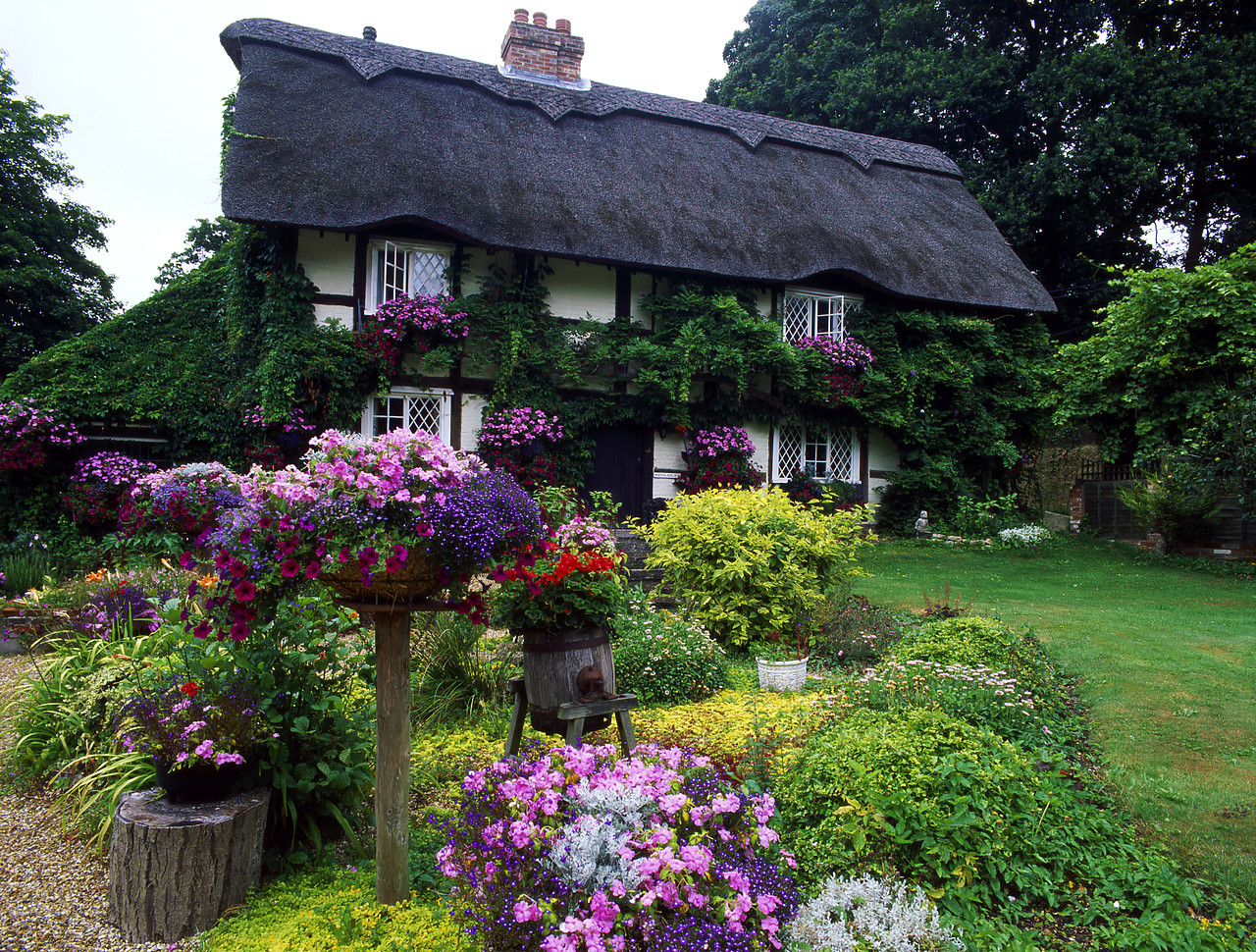 #990502-4 - 11th Century Thatched Farmhouse, Lymington, Hampshire, England